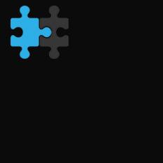 Partner-icon_233x233